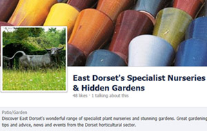 Facebook page - East Dorset's Specialist Nurseries and Hidden Gardens